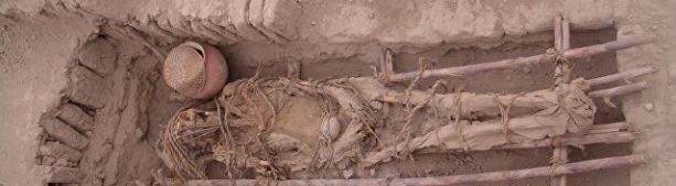 Генетики расшифровали ДНК древнейшей мумии Нового Света