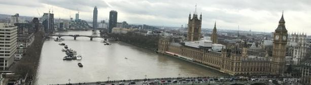 Из-за сильной концентрации кокаина у здания парламента в Темзе резвятся угри
