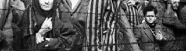 В Германии освобождение Освенцима приписали американцам