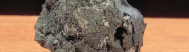Российские ученые нашли следы внеземной жизни