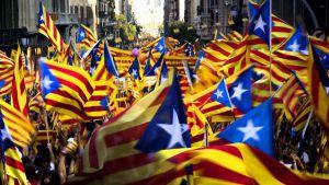 Движение за независимость Каталонии