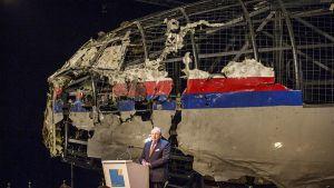 Катастрофа Boeing MH17 под Донецком