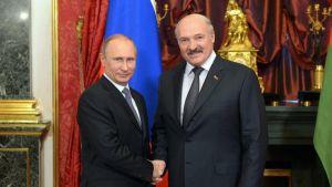Встреча Путина и Лукашенко в Сочи